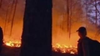 Man, Woman, Wild - Fire Hazard