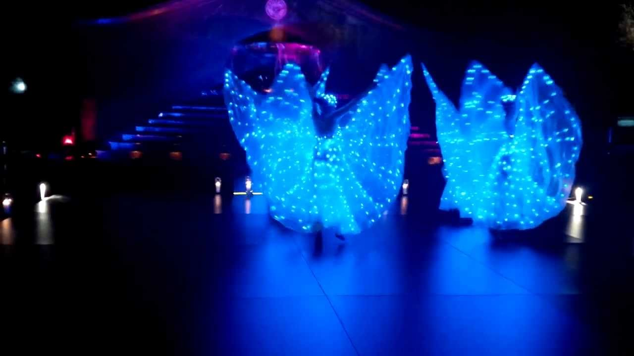 Led Butterfly Performance Youtube