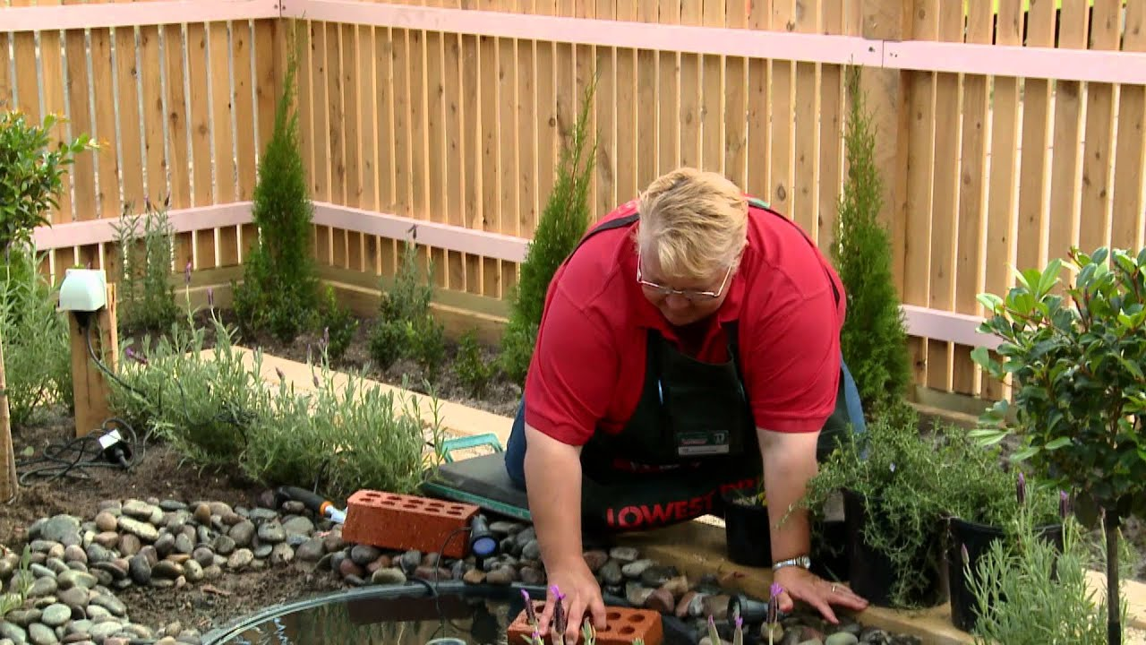 how to create a water garden diy at bunnings youtube