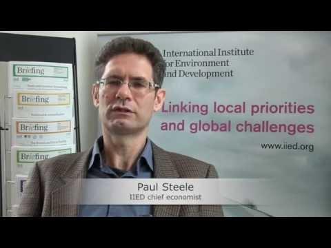Understanding the SDGs: an interview with Paul Steele