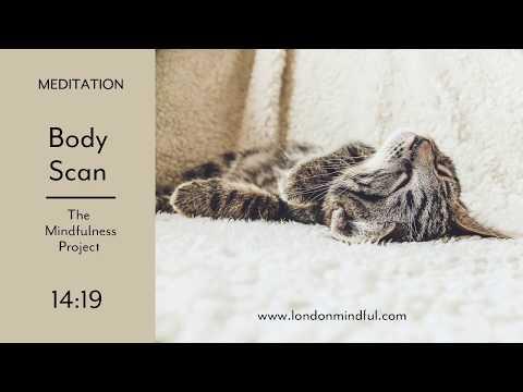 Body Scan I Mindfulness Meditation I The Mindfulness Project