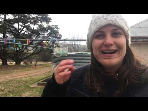 Alana Black - Rydal, Australia (Vlog 3, part 1)