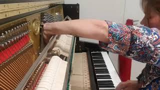 Download Video Patricia Martinez. Piano flamenco. Nardis MP3 3GP MP4