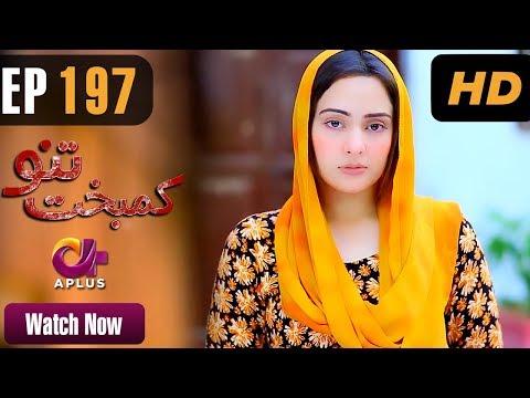 Kambakht Tanno - Episode 197 - A Plus ᴴᴰ Drama