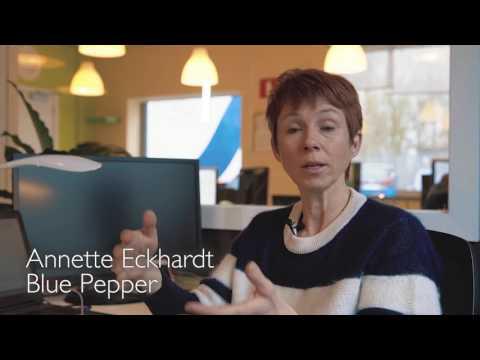 FPI (Formation Professionnelle Individuelle en Entreprise)
