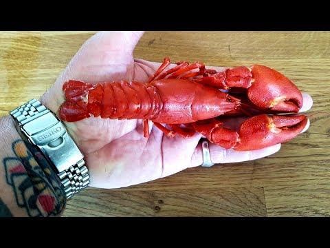 Crayfish Catch & Cook: Crayfish Linguine  #SRP #Crayfish #Crawfish