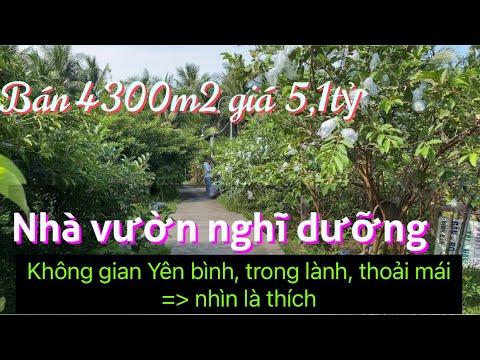 T690❤️🌸 Bán Nhà Vườn Cây trái đang cho thu nhập tuyệt đẹp ở xã Đông hoà, CT, Tiền giang #0937373173