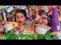 NO LIMIT SHOPPING SPREE CHALLENGE HAUL DOLLAR TREE! THIS COULD GET DANGEROUS!