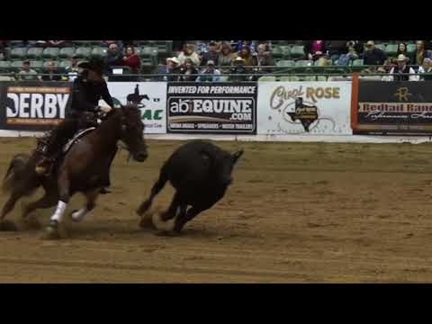 Classic Equine Reined Cowhorse...