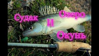 СУДАК и ОКУНЬ на озере ловля ВЕСНОЙ
