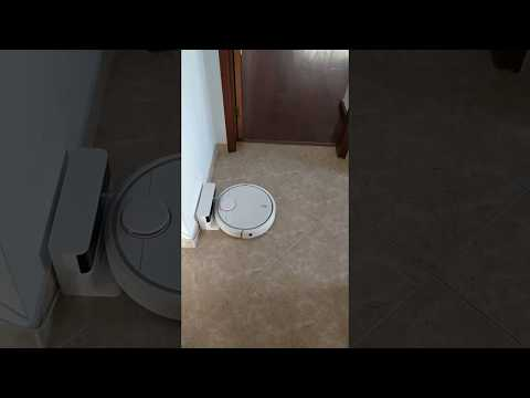 Control Xiaomi Robot with voice commands through Google Home
