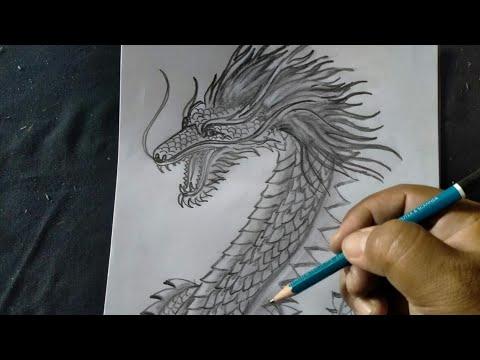 Cara Gambar Sket Naga Hitam Putih Youtube