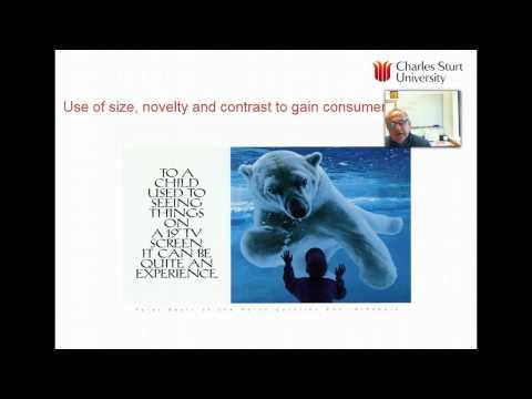 Lecture 7: Consumer peception