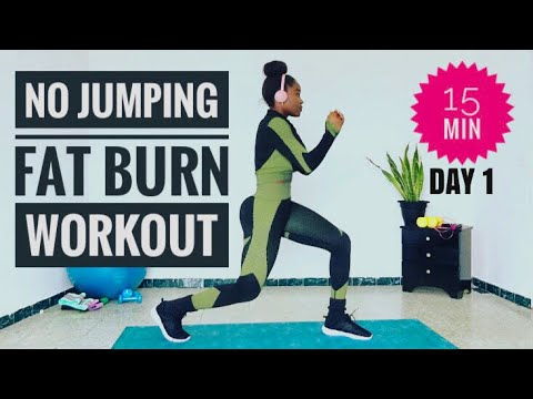 low impact full body workout15 min no jumping fat burn🔥at