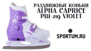 Раздвижные коньки ALPHA CAPRICE PW-219 Violet