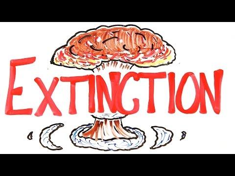 6 Крупнейших Вымираний в Истории