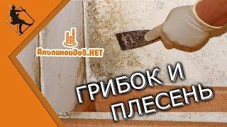 Грибок и плесень в квартире(Вашему панельному дому больше 40 лет? Возможно вы заметили на стенах черные пятна, плесень, грибок, мокрые..., 2015-08-18T06:50:22.000Z)