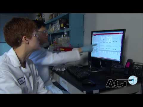 tratamento-à-base-de-células-tronco-devolveu-a-visão-a-pacientes-de-uma-clínica-de-massachu