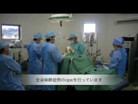 Sasaki Dentistry (near Tokyo in Chiba prefecture)
