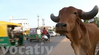 Hindu Extremists Kill Muslim Teen Over Eating Beef