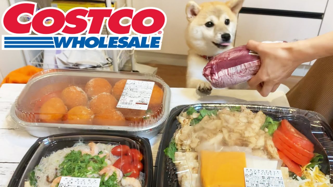 COSTCO In Japan With My Shiba!