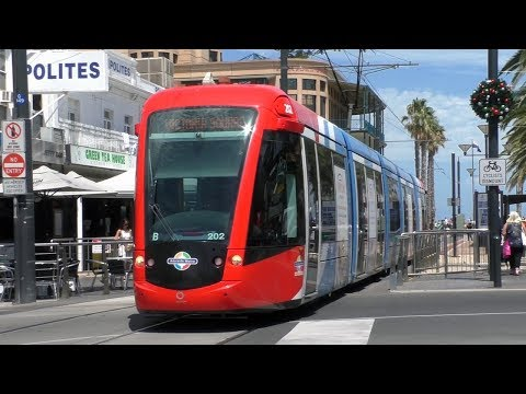 Trams And Buses In Glenelg - Adelaide Metro