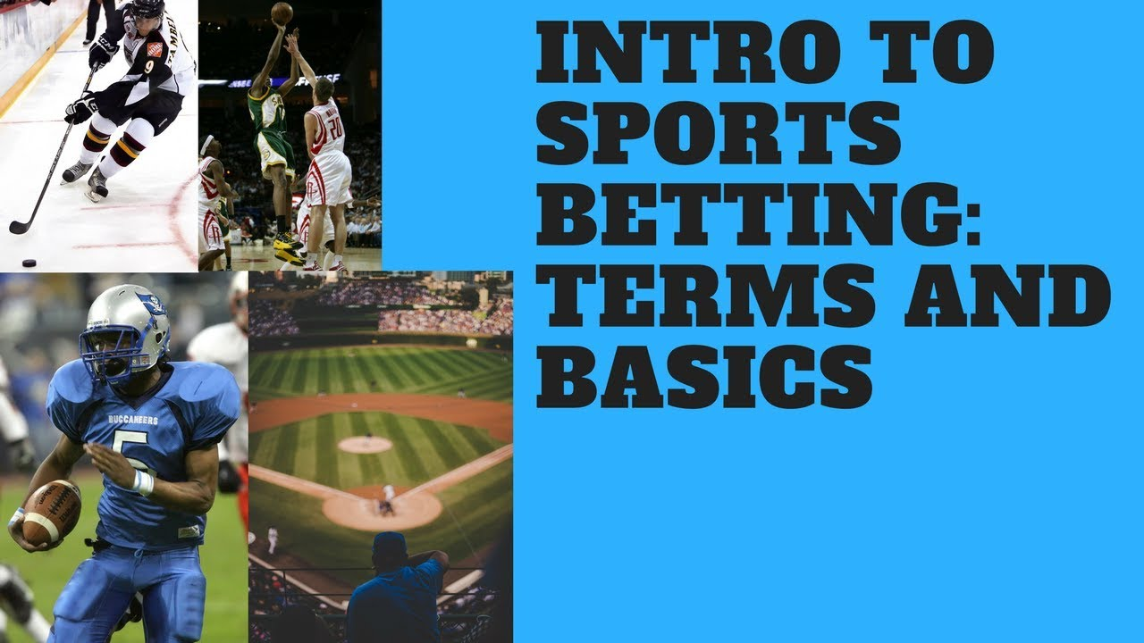 Sports betting terms push lawn double seven odds each way betting