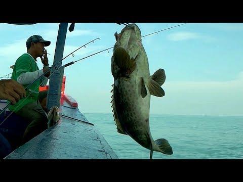 COBA LIHAT panen Ikan Besar .. sensasi MANCING di RUMPON SATU ini !!! Bottom fishing