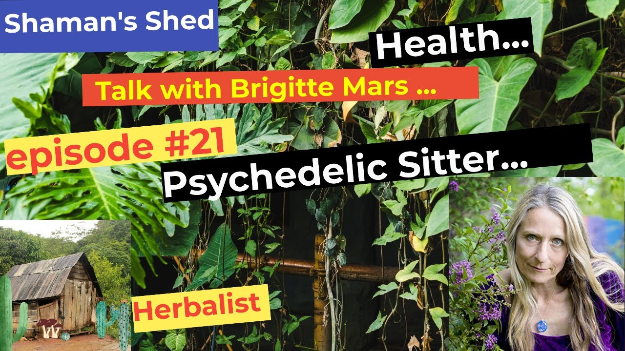 #21 Talk with Brigitte Mars   Raw Diet   Psychedelics   Spirituality and more