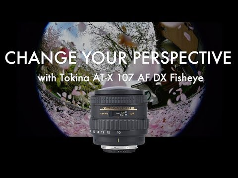 Change Your Perspective With Tokina AT-X 107 AF DX Fisheye