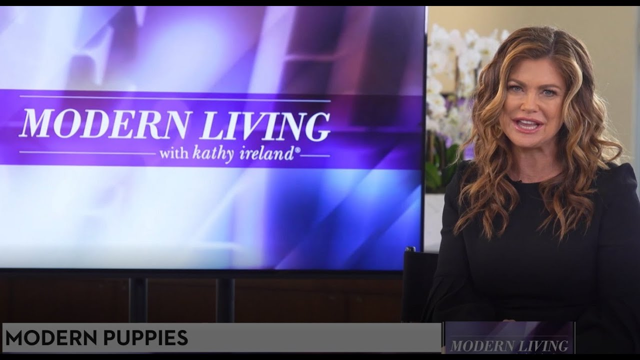 Modern Puppies discuss COVID-19 Dogs on Modern Living with Kathy Ireland - Puppy Apartment Solution