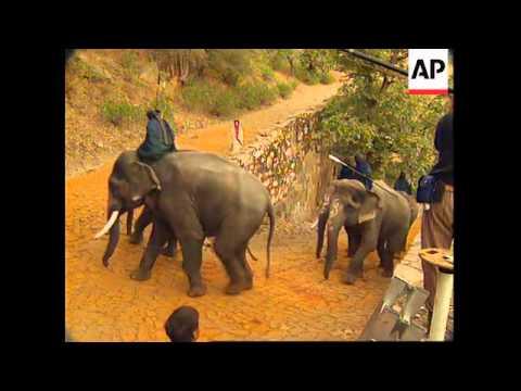 INDIA: SHOOTING BEGINS ON KAMA SUTRA MOVIE