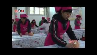 New born babies' nannies in great need in China