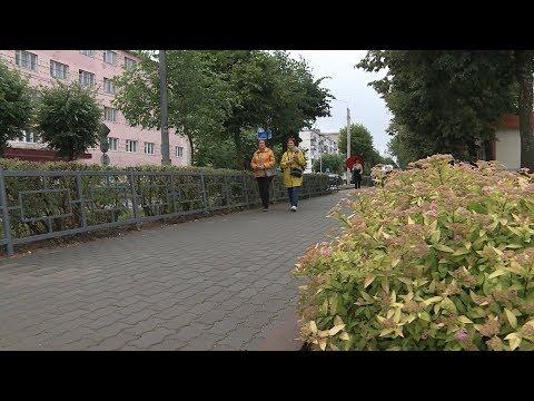 В Волгореченске отметили День города открытием обновлённой центральной аллеи