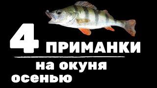 4 приманки на окуня осенью. Где искать рыбу, какие веса и цвета использовать?