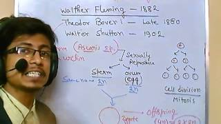 Genetics lecture 8 | mitosis and meiosis cell division
