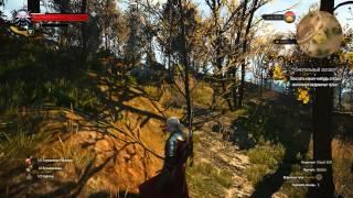 Ведьмак 3 Квест Смертельный заговор - Прохождение 02 / The Witcher 3
