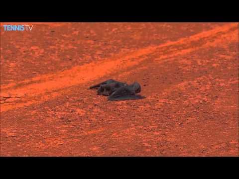 Perdió, pero lo ovacionaron por atrapar un murciélago