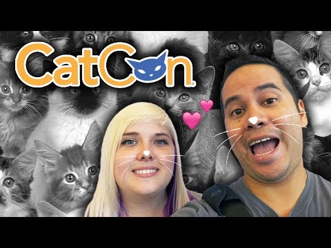 Playing with cats in VIRTUAL REALITY! Cat Sorter VR plus mystery boxes and vlog fun at CatCon!