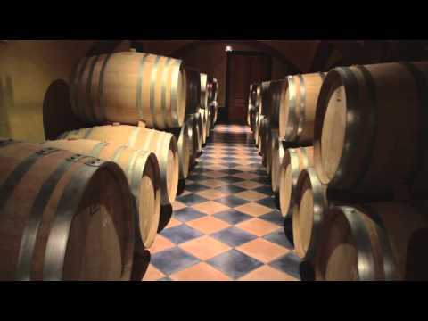 The Wines of Celler Vall Llach