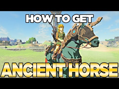 How to Get the Ancient Horse Armor in Breath of the Wild, The Champions Ballad | Austin John Plays