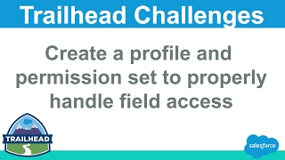 Create a profile and permission set to properly handle field access | Salesforce Trailhead Solution