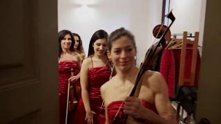Alter Echo String Quartet- Promo Videoclip