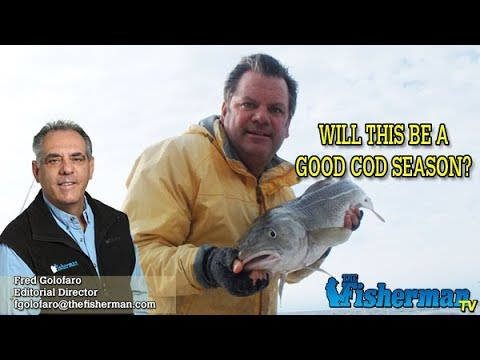 December 5, 2019 Long Island Metro Fishing Report With Fred Golofaro