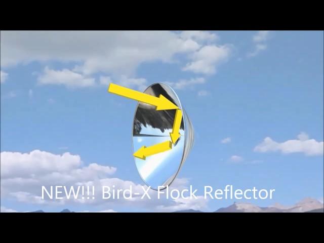 New!!! ????????????????? ????? Bird X Flock Reflectors Install Procedure