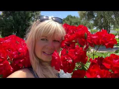 АНТАЛИЯ ИЛИ АЛАНИЯ, ГДЕ ЛУЧШЕ ЖИТЬ И ОТДЫХАТЬ? ТУРЦИЯ 2019 | Arina Belaja