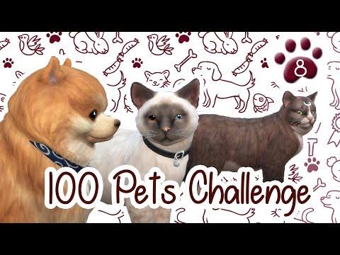 The Sims 4 Indonesia : 100 Pets Challenge - Ke Flea Market~ 🐾8