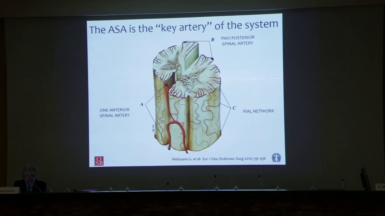 29 Vascular Anatomy Of The Spinal Cord By Prof Germano Melissano