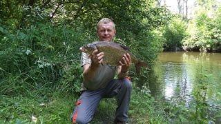Ловля крупного леща на реке. На горох.(Дорогие Друзья, я на рыбалке не могу много и громко разговаривать, а после рыбалки бывает что некогда расска..., 2016-06-24T02:05:21.000Z)