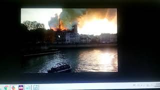 Brulado atingis la katedralon de Notre-Dame de Parizo